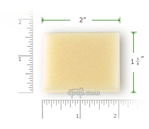 AEIOmed Everest Foam Filter with Rulers2